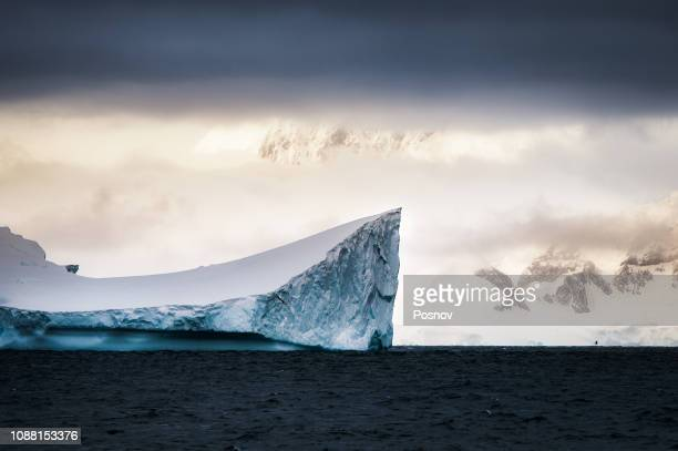 brabant island - antarctic peninsula stock pictures, royalty-free photos & images