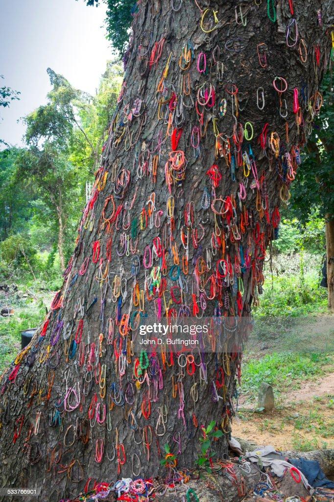 Bracelets hanging from Baby Killing Tree in Killing Fields, Phnom Penh, Phnom Penh, Cambodia : Foto stock