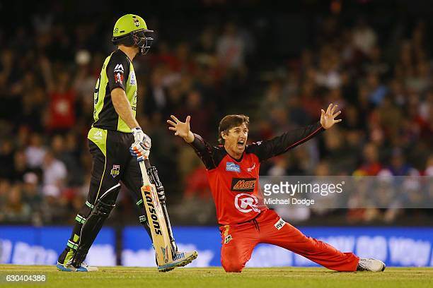 Brad Hogg of the Renegades appeals unsuccessfully for an LBW during the Big Bash League match between the Melbourne Renegades and Sydney Thunder at...