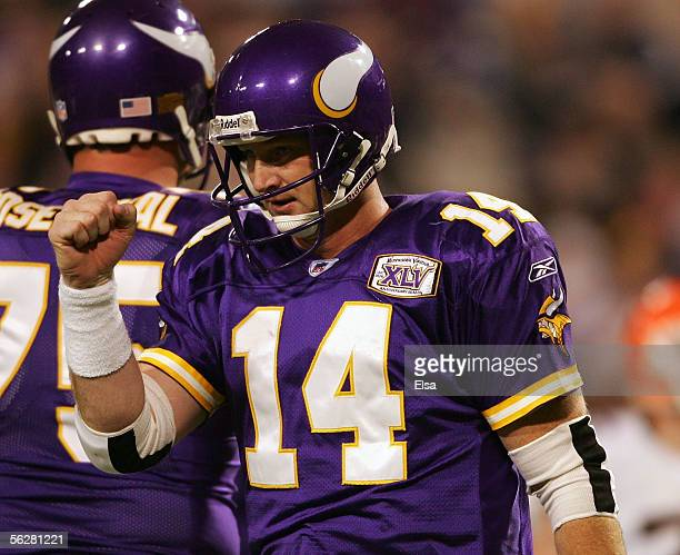 Brad Johnson of the Minnesota Vikings celebrates a touchdown in the fourth quarter against the Cleveland Browns on November 27 2005 at the Hubert H...