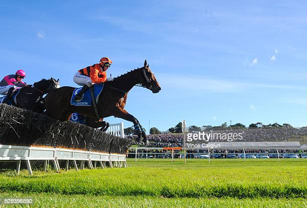 Brad McLean riding Mannertone leads the field in Race 7 Grand Annual Steeplechase during Grand Annual Day at Warrnambool Race Club on May 5 2016 in...