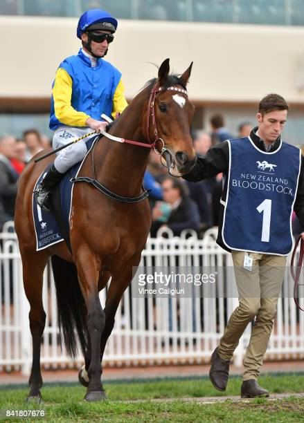 Brad Rawiller riding Black Heart Bart before the start of Race 7 New Zealand Bloodstock Memsie Stakes during Melbourne Racing at Caulfield Racecourse...