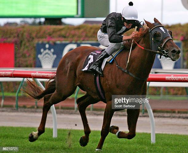 Brad Rawiller riding Chasm wins the Auckland Racing Club Handicap during the Anzac Day meeting at Flemington Racecourse on April 25 2009 in Melbourne...