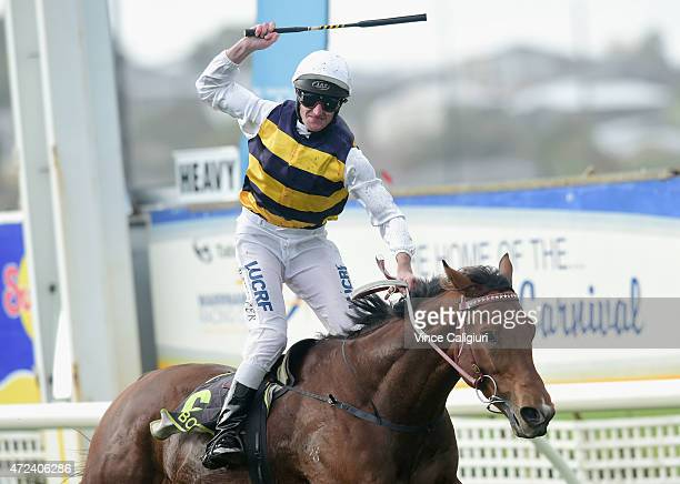 Brad Rawiller riding Tall Ship celebrates winning Race 8 the Sungold Warrnambool Cup during Grand Annual Day at Warrnambool Racing Club on May 7 2015...
