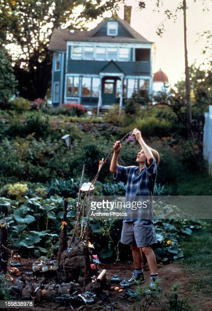 Brad Renfro holding onto a stem of a plant in a scene from the film 'The Cure' 1995