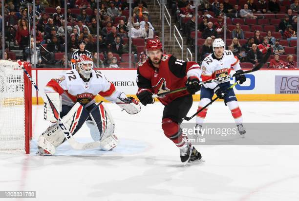 Brad Richardson of the Arizona Coyotes skates for a loose puck as Sergei Bobrovsky of the Florida Panthers looks to make a save at Gila River Arena...
