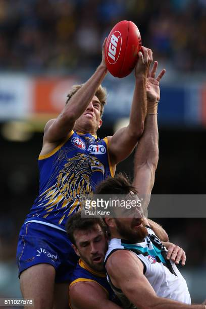 Brad Sheppard of the Eagles marks the ball during the round 16 AFL match between the West Coast Eagles and the Port Adelaide Power at Domain Stadium...