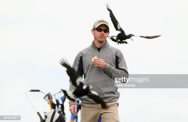 Brad Shilton of Australia is swooped by magpies during previews ahead of the 2013 Australian Masters at Royal Melbourne Golf Course on November 11,...
