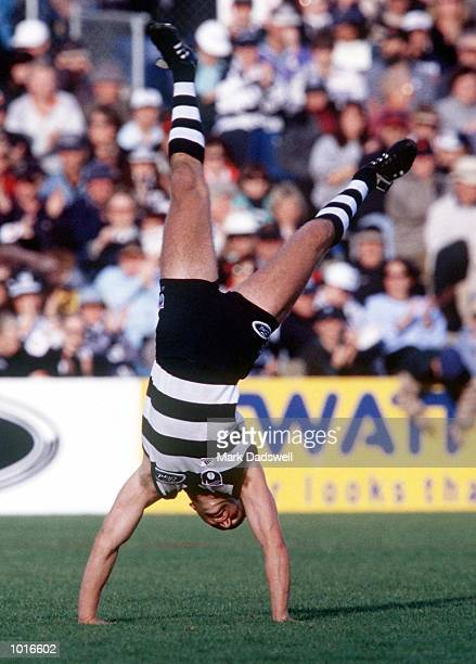 Brad Sholl of Geelong celebrates a goal with a cart wheel in the match between Geelong and Hawthorn during round six of the AFL season played at...