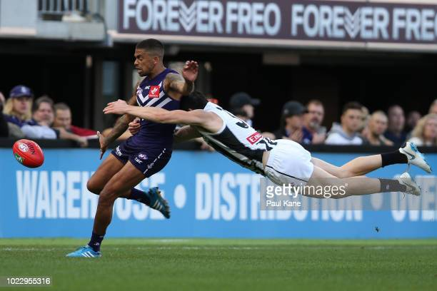 Bradley Hill of the Dockers gets his kick away while being tackled by Brayden Maynard of the Magpies during the round 23 AFL match between the...