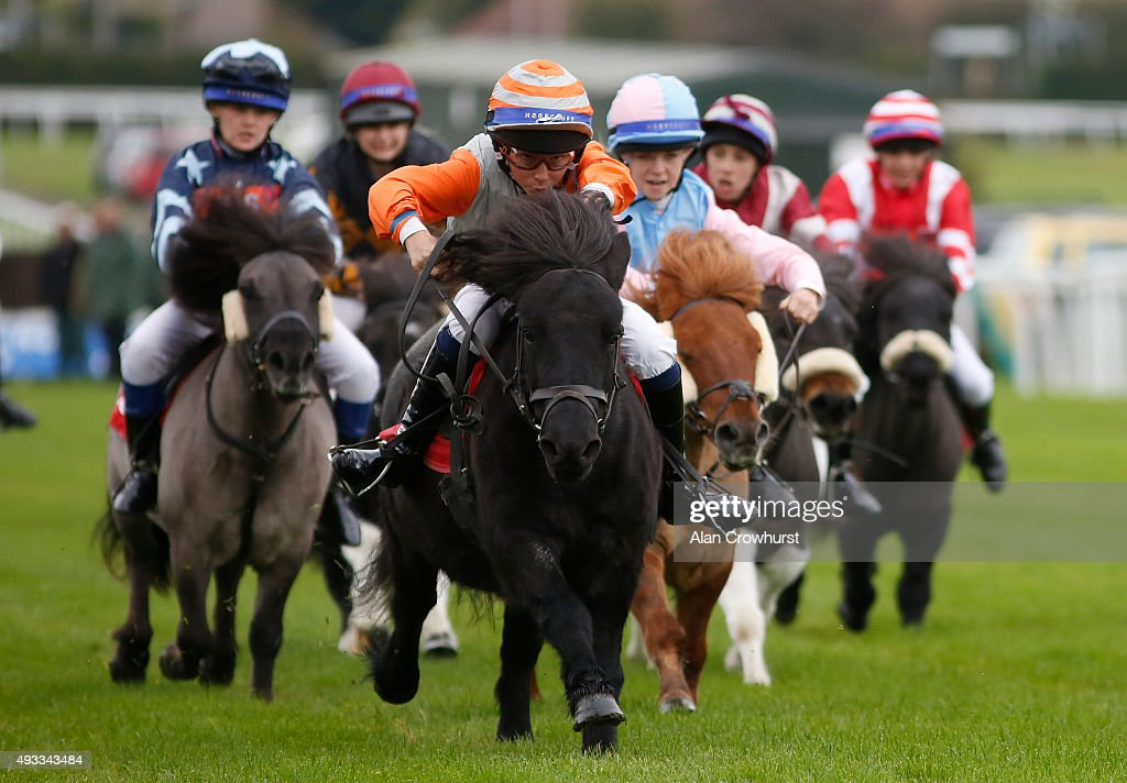 Bradley Kent riding Bugsey (C, orange sleeves) win The Moorcroft Racehorse Welfare Centre Shetland Pony Gold Cup at Plumpton racecourse on October 19, 2015 in Plumpton, England.