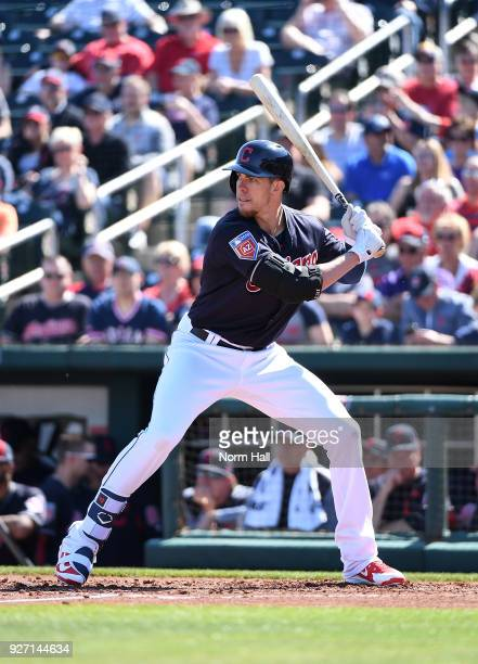 Bradley Zimmer of the Cleveland Indians gets ready in the batters box during a spring training game against the Texas Rangers at Goodyear Ballpark on...