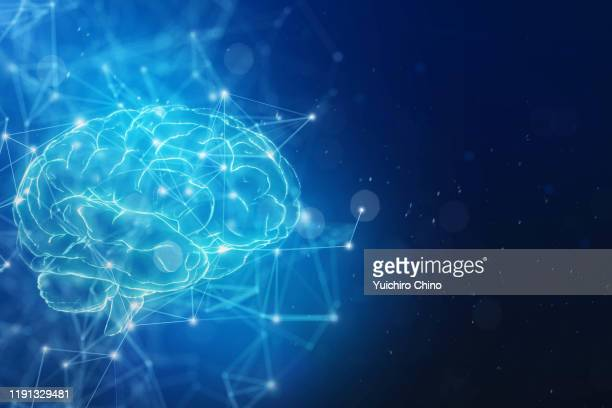 brain and network - human nervous system stock pictures, royalty-free photos & images