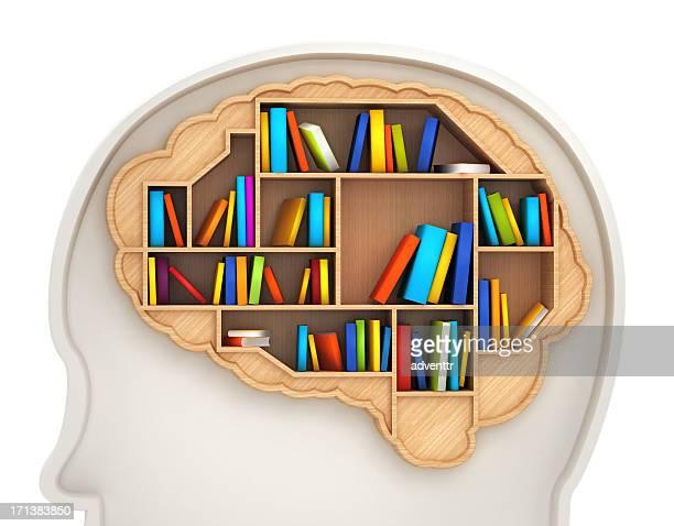Cerebro estantería de libros