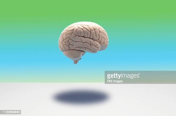 brain floating on multi colored background - brain  stock pictures, royalty-free photos & images