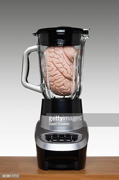 Brain in a blender