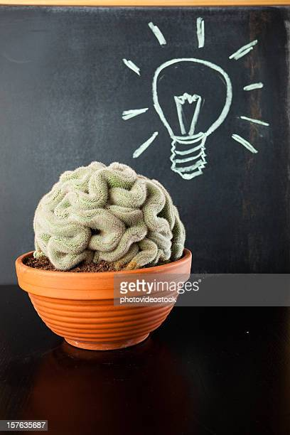 Brain in a pot with great idea!