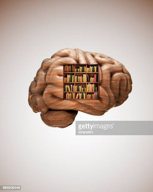 brain made of wood with a bookcase - ricordi foto e immagini stock