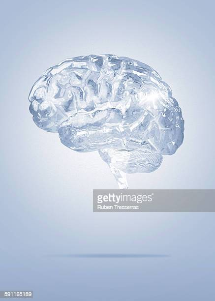 brain of cristal - human brain stock pictures, royalty-free photos & images