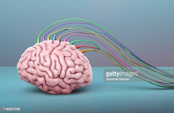brain on blue wired up - control stock pictures, royalty-free photos & images