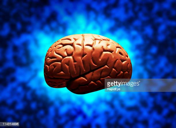 Brain on electric blue