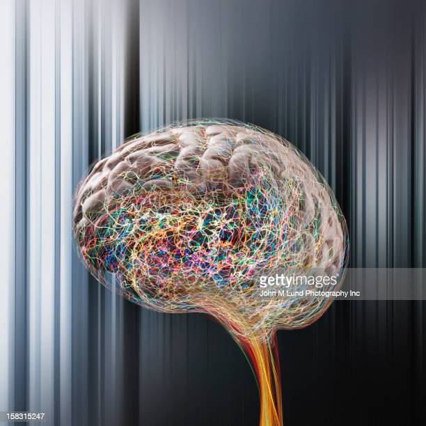 Brain surrounded by colorful lines