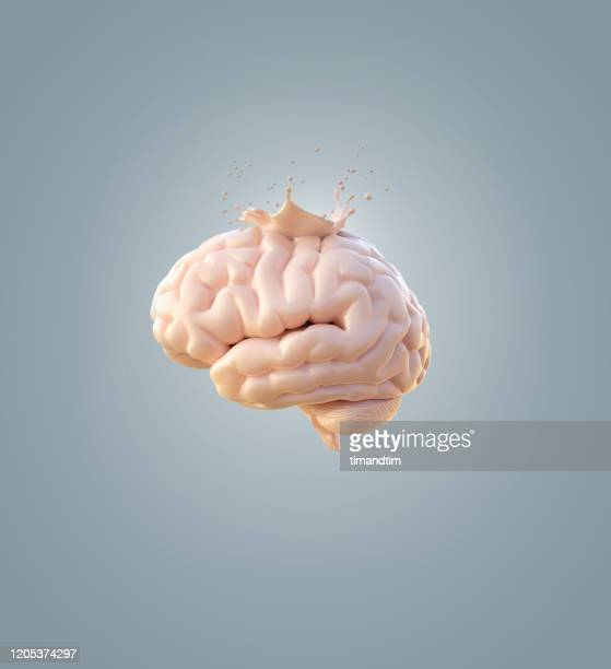 brain with a splash - man made object stock pictures, royalty-free photos & images
