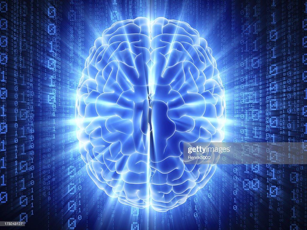 Brain with hi-tech cyber theme : Stock Photo