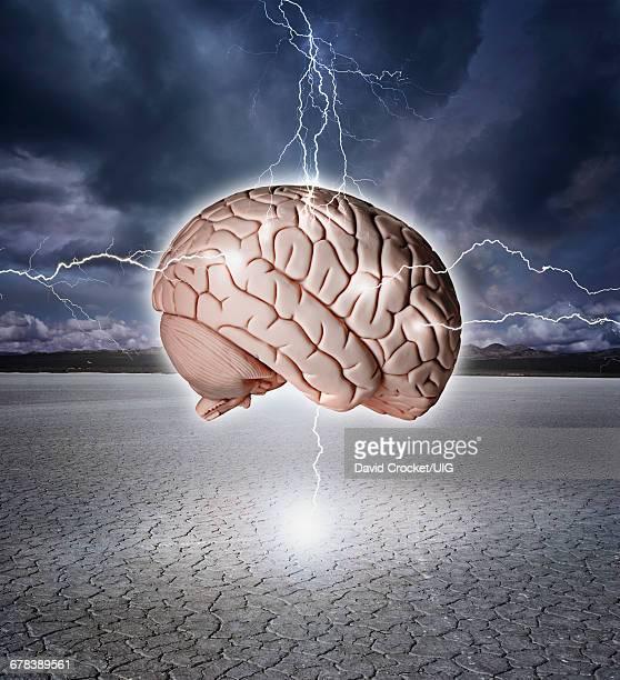 Brain With Lightning