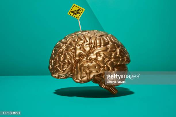 "brain with refuel sign - ""shana novak"" stock pictures, royalty-free photos & images"