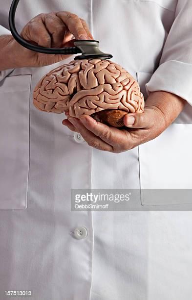 Brain's Heartbeat