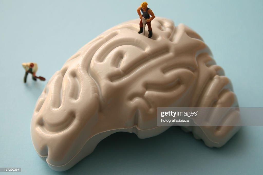 Brainworks : Stock Photo