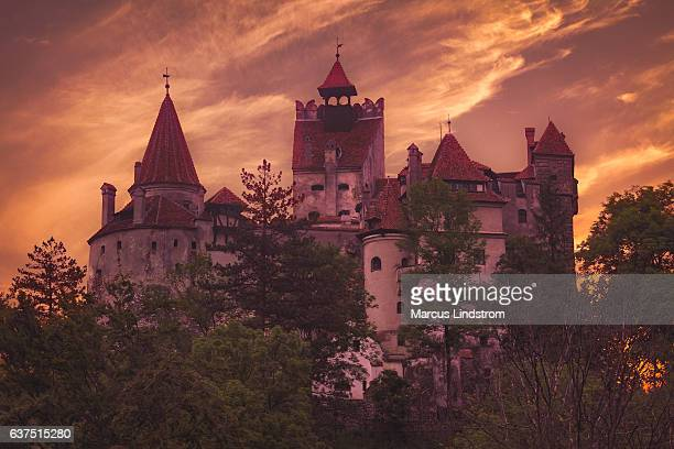 bran castle, romania - count dracula stock photos and pictures