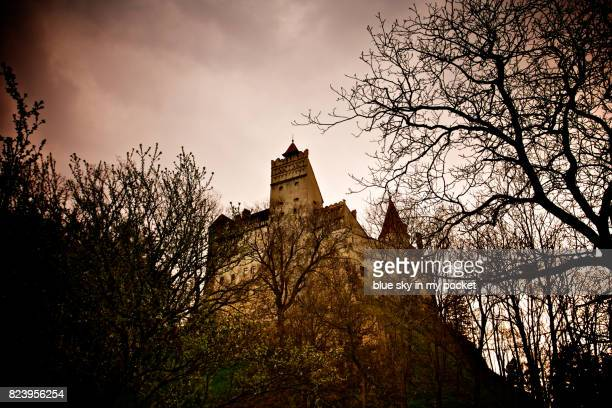 bran castle, romania. - count dracula stock photos and pictures
