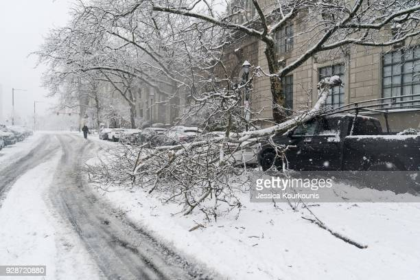 A branch that fell from heavy snow sits atop a truck on March 7 2018 in downtown Philadelphia Pennsylvania This is the second nor'easter to hit the...