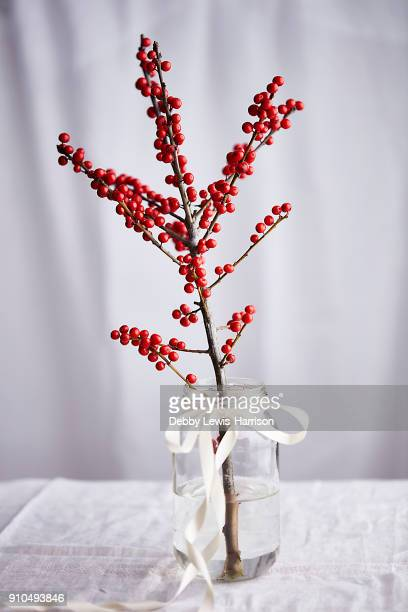 Branch with red berries in glass jar