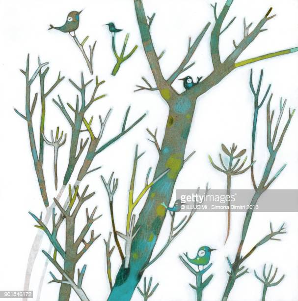 branches & birds - simona dimitri stock-fotos und bilder