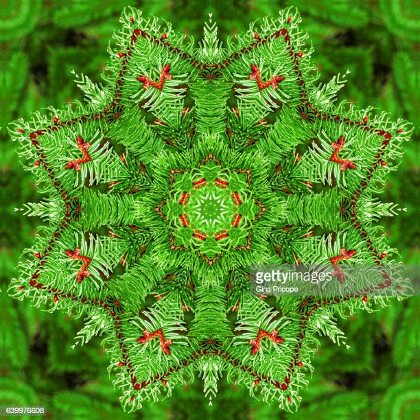 Branches of a fir tree, kaleidoscope effect.