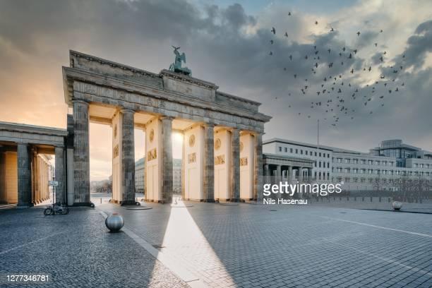 brandenburg gate berlin at sunrise - brandenburg gate stock pictures, royalty-free photos & images