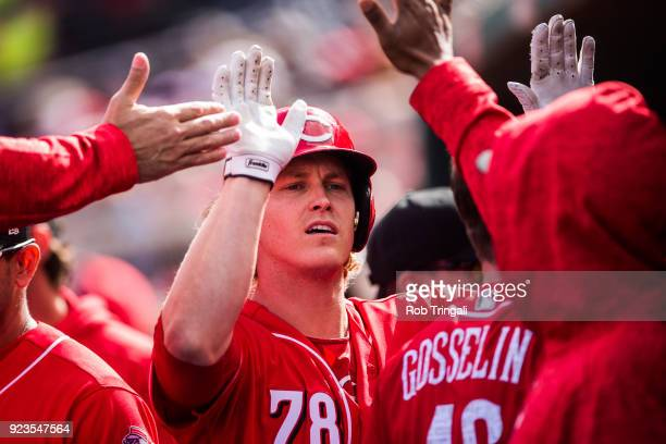 Brandon Dixon of the Cincinnati Reds gets greeted by his teammates in the dugout after hitting a 2run home run against the Cleveland Indians during a...