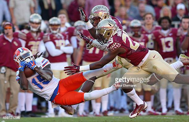 Brandon Powell of the Florida Gators makes a catch during a game against the Florida State Seminoles at Doak Campbell Stadium on November 29 2014 in...