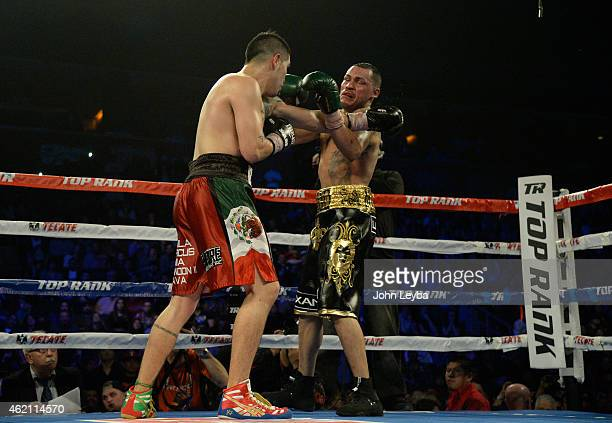 Brandon Rios lands a punch on Mike Alvarado during the WBO International Welterweight Title fight January 24, 2015 at 1st Bank Arena.