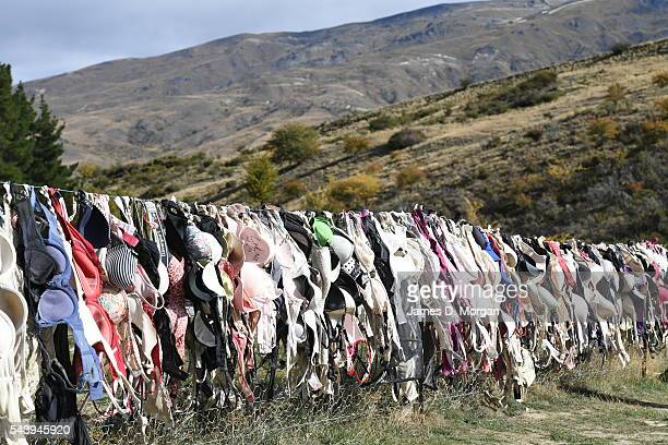 Bra's left on a fence as a way of raising money on April 24 2016 in Cardrona New Zealand Bradrona as it is now affectionately known to locals is a...