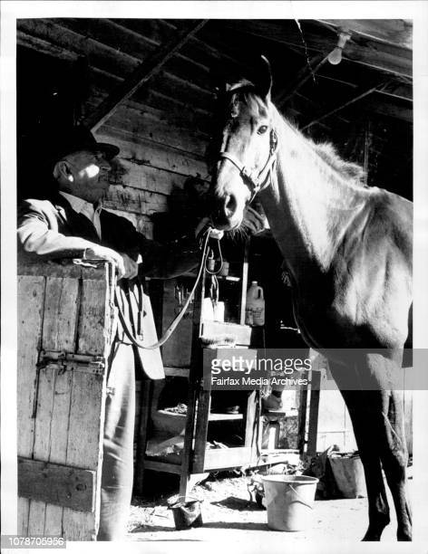 Brash but no city slickerTrainer George Daniel and Purr Lilo at Bendigo yesterdayPurr Lilo the racehorse who roamed Ned Kelly country for 12 months...