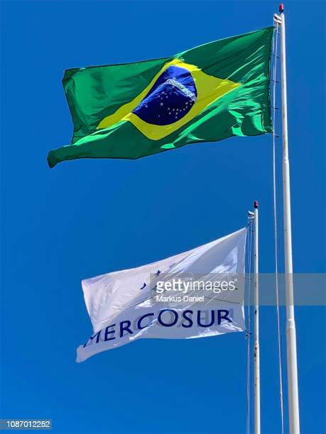 Brasilian Flag and Mercosur Flag