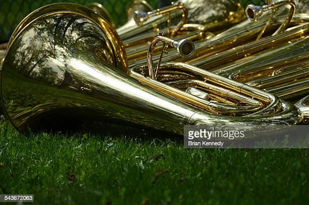 Brass in grass