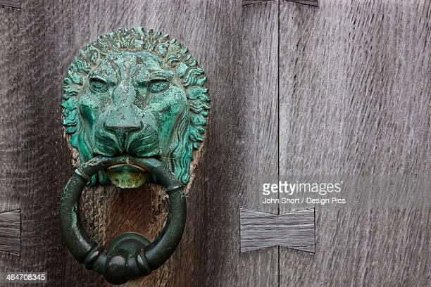Brass Lion Door Knocker On A Wooden Door