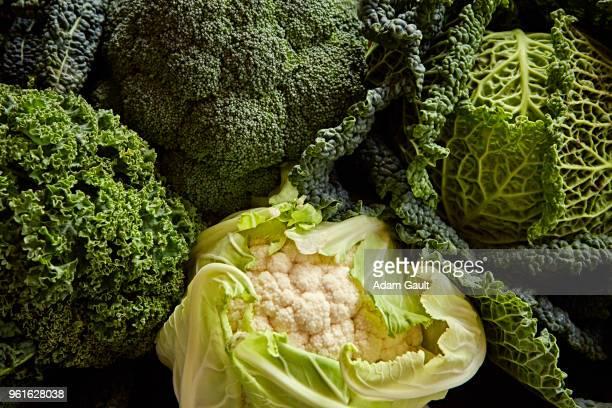 Brassica Vegetables