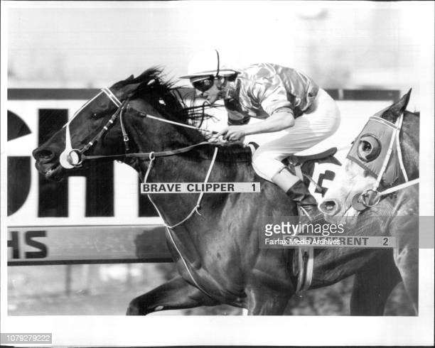 Brave Clipper 1 So Different 2Rosehill Races Race 4 Molkote HcpWiiner Brave ClipperR To S Brave ClipperJockey L Masters August 03 1985