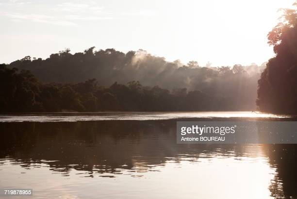 brazil, amapa, bank of the river araguari and the amazonian forest at dawn - amapá state stock pictures, royalty-free photos & images